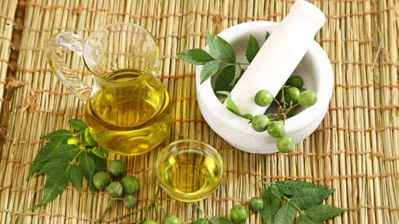 Neem: What's That? How Can It Improve Your Looks?